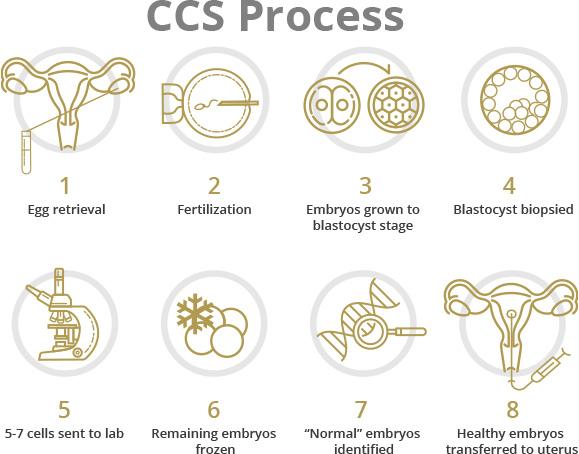 CCS Process
