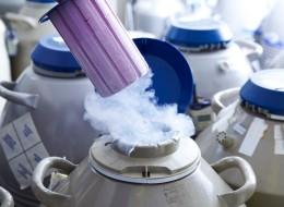 Huffington Post: Egg Freezing Deserves Serious Consideration