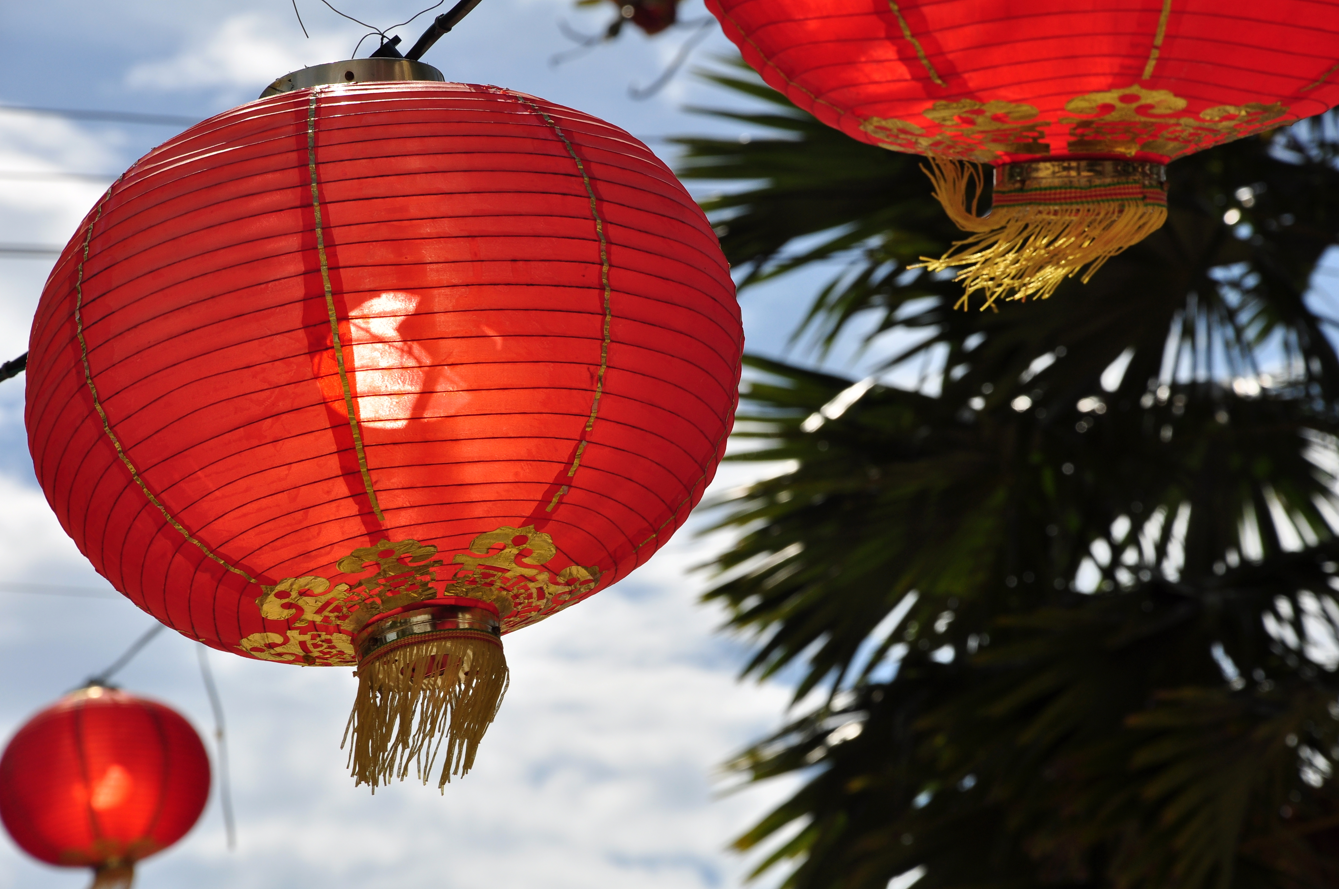Happy Chinese New Year from Genesis Fertility Centre in Vancouver