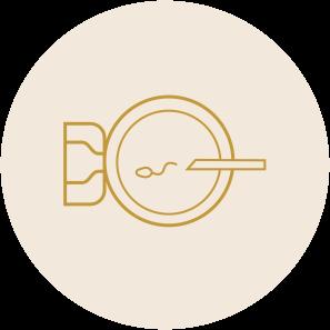 IVF - Icon