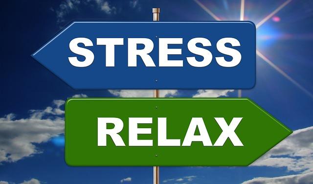 stress and fertility